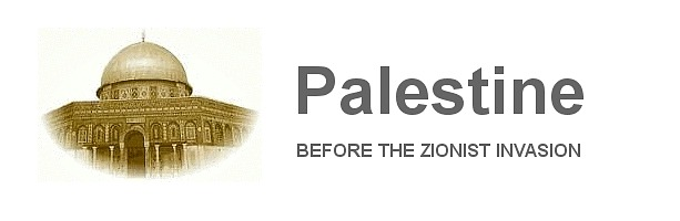 Palestine Gallery Header